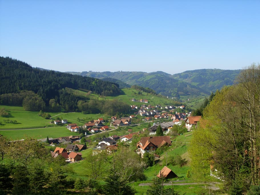The village of Seebach