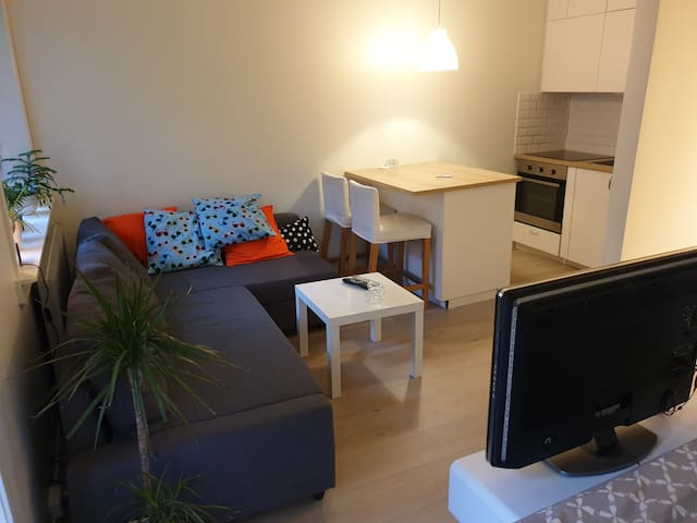 The appartment has a nice sofa that easily can be turned into an extra double bed.