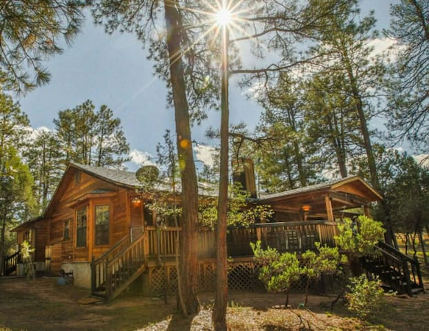 Cabin & Casita Surrounded by Pines