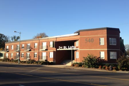 #104 Lofts-Modern Flat Downtown area Clarksville