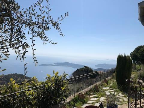 Maison : vue panoramique avec terrasse et jardin