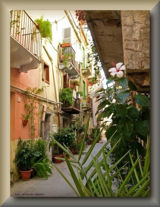 Quadro su tela della via Sances,dove è  ubicata la nostra piccola e amata struttura.