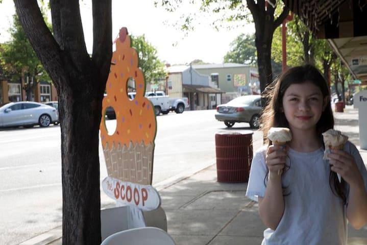 The local ice cream shop