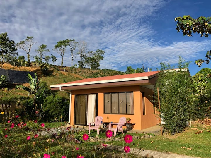 Turrialba Guest House with a View