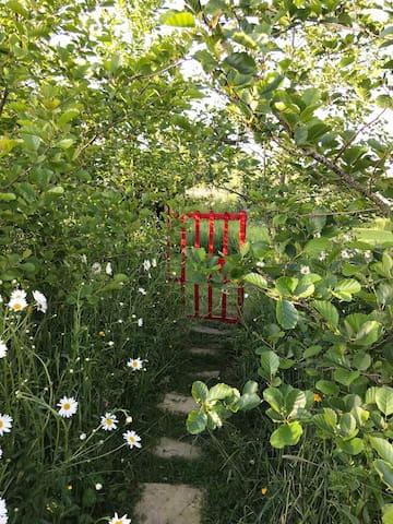 Rural Retreat, amazing view's, beautiful Garden