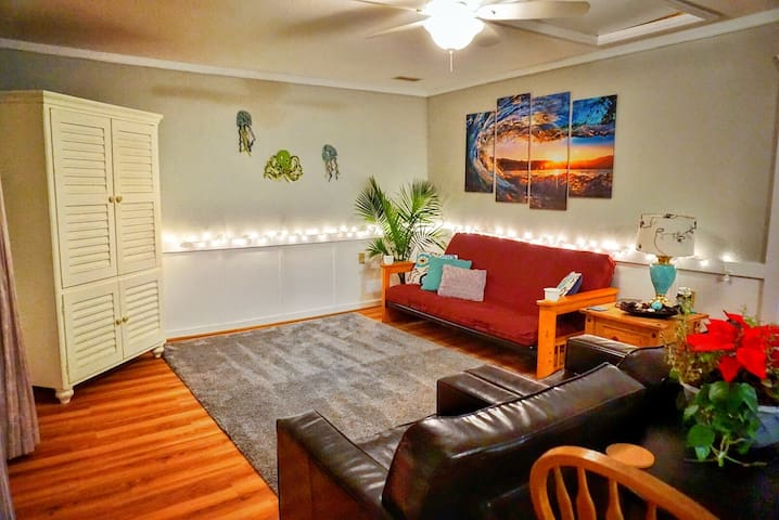 Spacious living room with super fluffy rug, cable tv and Full size futon bed/couch.