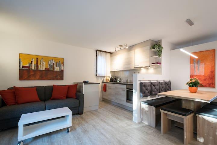 Sehr gepflegte Wohnung im Zentrum von Interlaken - Interlaken - Appartement