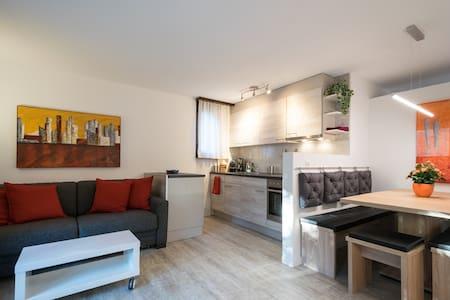 Sehr gepflegte Wohnung im Zentrum von Interlaken - Interlaken