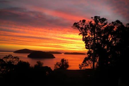THE NEST Wyuna Bay, Coromandel. Home from home. - Huis