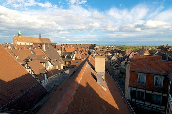 Colmar Atypique Loft Terrasse & SPA vue Cathédrale