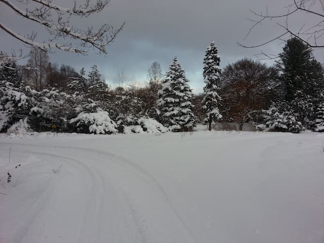 Winter at Stardance Farms Sledding and cross country skiing available.