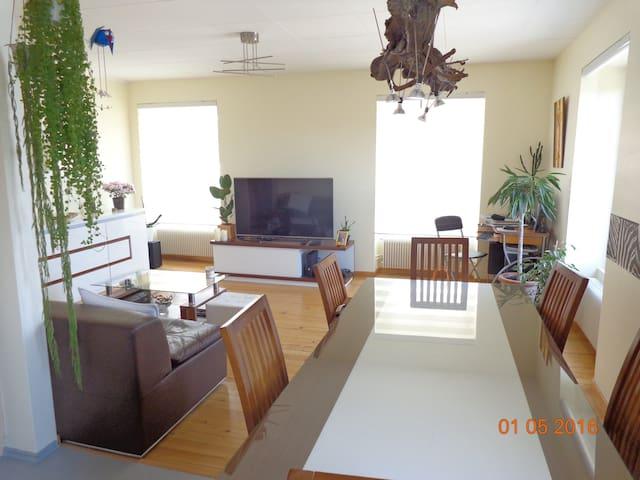 bel appartement ensoleillé avec p. déjeuner offert - Olwisheim - 公寓