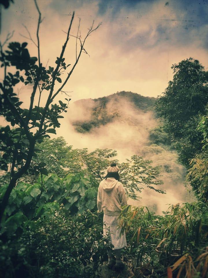 AWAY WITH THE FAIRIES |森樂谷
