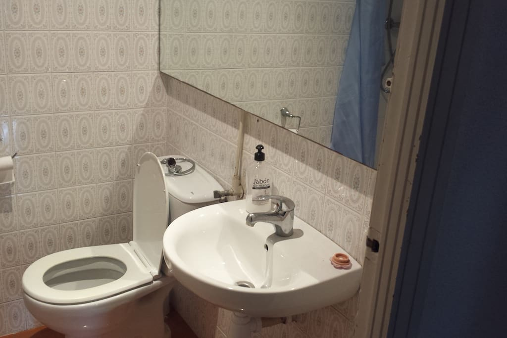 Guests bathroom with shower.