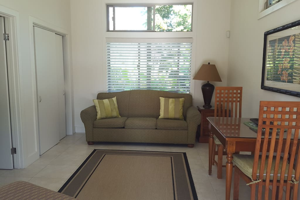 Living room area with comfortable sofa bed.
