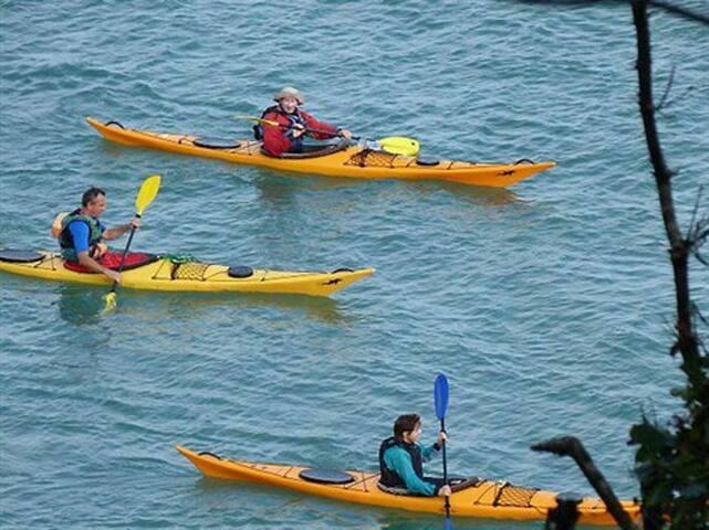 Kayak Saint Cast