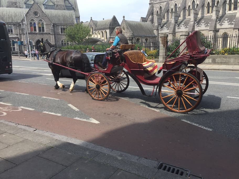 Right outside my apartment on a sunny day in Dublin. Why not take a sight seeing trip on a pony and carriage.