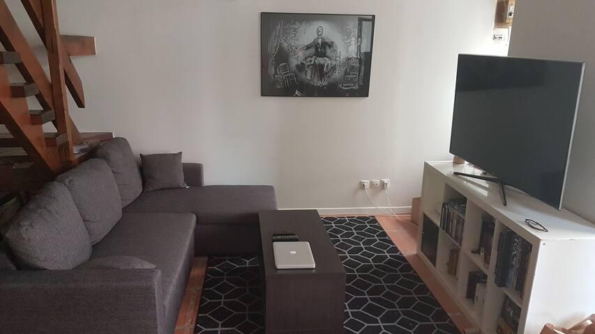 Chambre dans appartement croix roussien