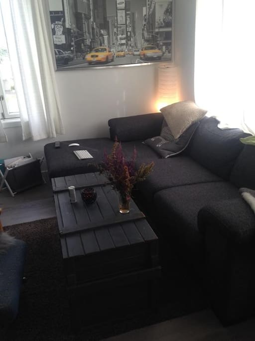 Shared living room with TV, Wifi, movies and tv-series, stereo.