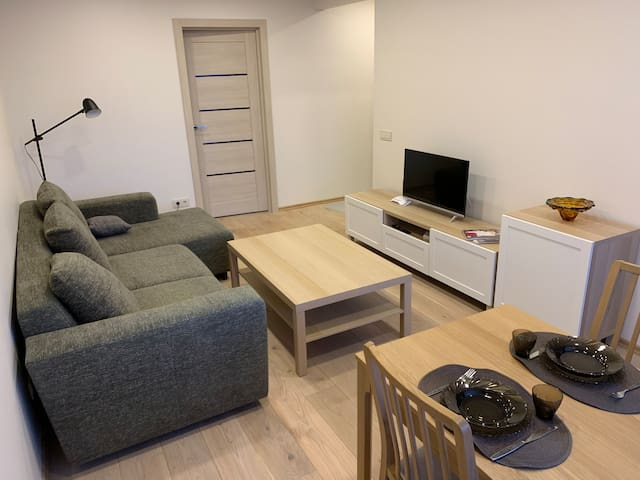 Modern Apartment Close to the Panevezys Center