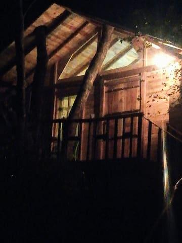 Gteen tree house