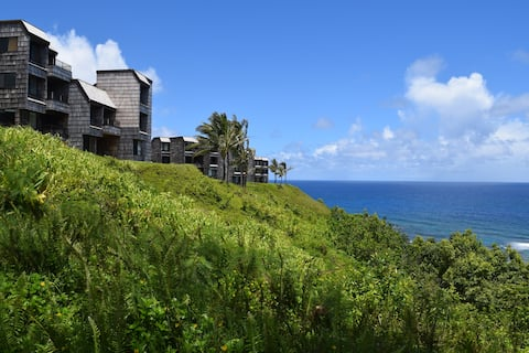 OCEANFRONT Sealodge at Princeville B1