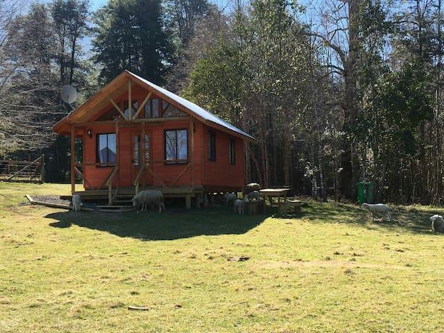 Cabaña en la Pradera Lindo Paisaje en Pucon