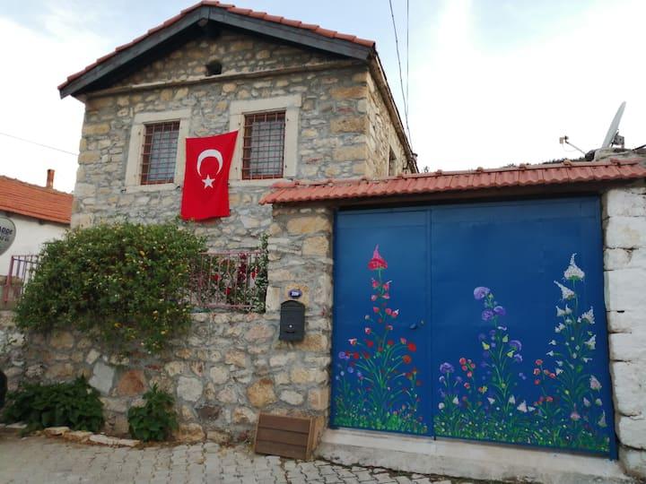 Denize 15 km mesafede köy içi  taşevde özel oda