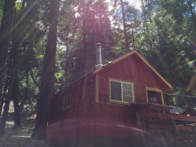 Hull Mt. Cabins Off the Grid Wilderness Retreat