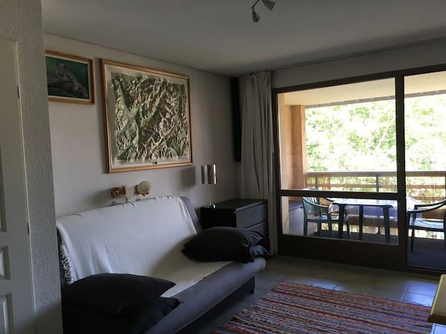 Grand studio coin montagne Lac du Pontillas - La Salle-les-Alpes - Condominium