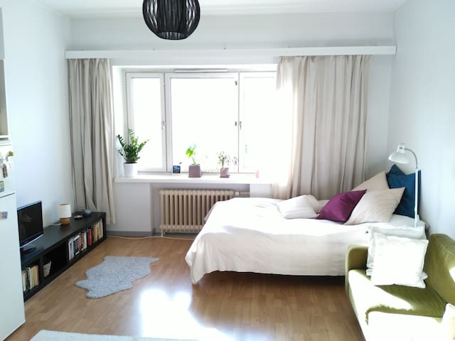 Cosy and light studio in Kallio - Helsinki - Appartement