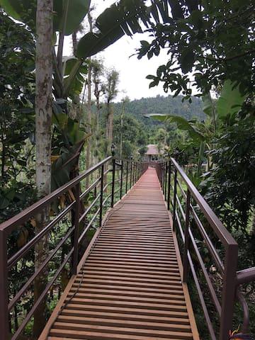 Walkway flyover bridge