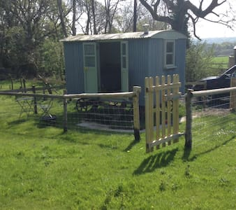 Shepherds hut in an idyllic setting - Church Knowle - Hütte