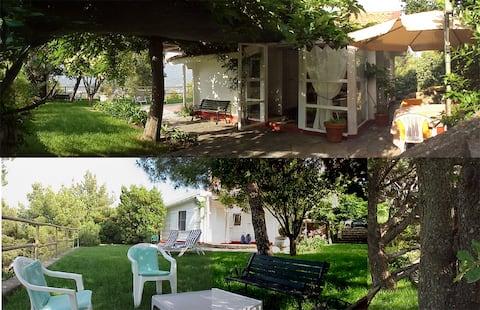 Deliziosa casetta nel verde delle colline Liguri.