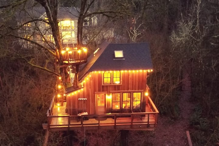 Emerald Forest Treehouse - From Treehouse Masters