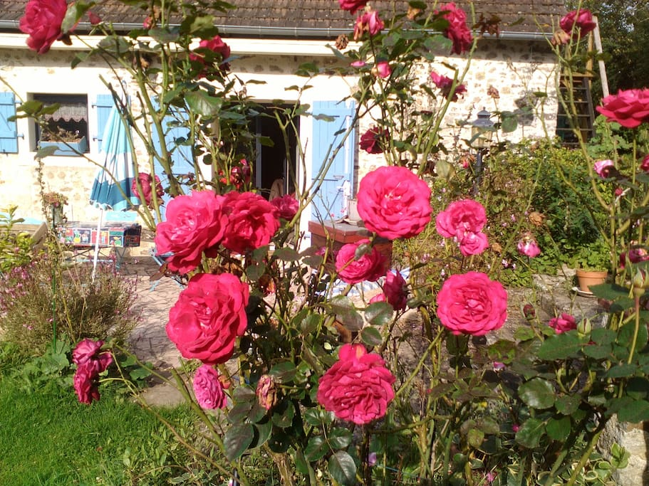 Chambre la campagne pr s des 24h du mans cottages - Petit jardin restaurant luxembourg le mans ...
