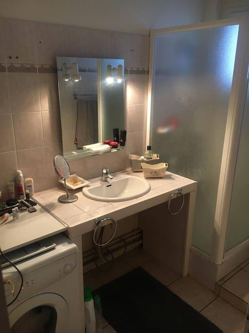 chambre privative dans appartement t3 proche m tro wohnungen zur miete in toulouse occitanie. Black Bedroom Furniture Sets. Home Design Ideas