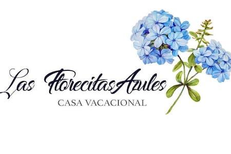 La Casa de las Florecitas Azules