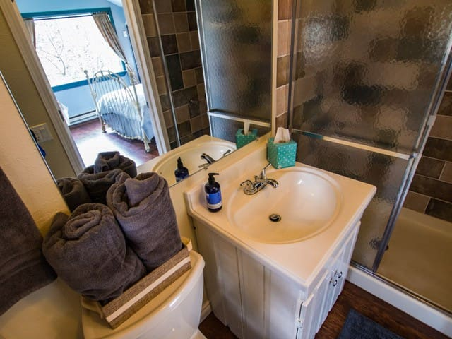 Small bath with shower and all amenities