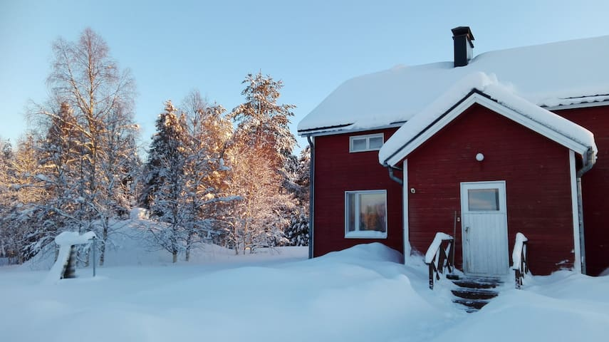 Our home is your home; room on the Arctic Circle!