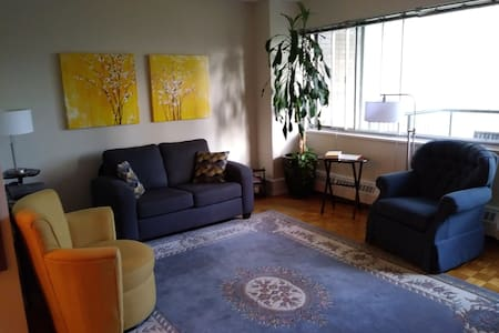 Cozy Nicely Furnished Studio Apartment