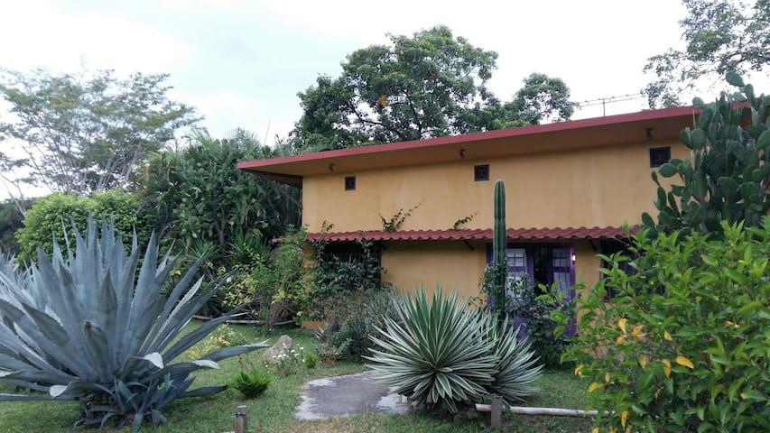 Chambre et salle de bains privée à Casa Cactus