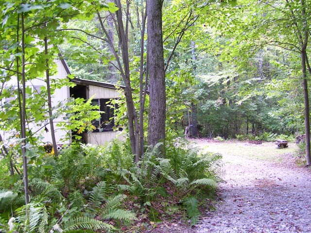 Cabin with Fire Ring near Ohiopyle