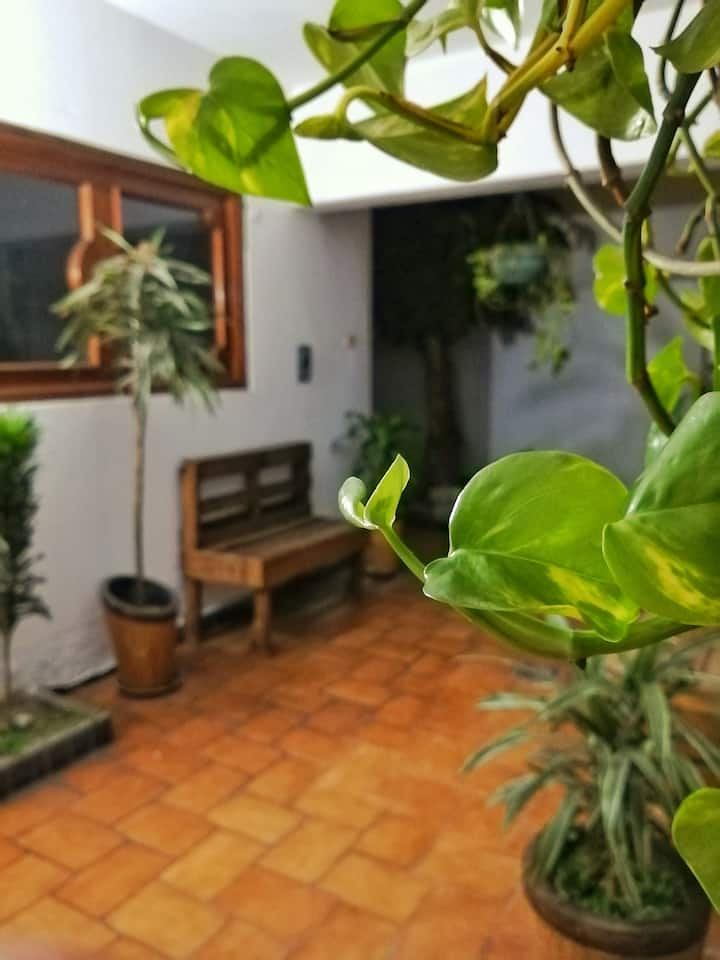 Private Room/ Excelente zona Avenida Juárez Puebla