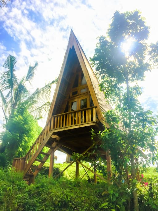 Your local hardwood and glass a-frame house is facing rice fields and the protected forrest that boarders our land.