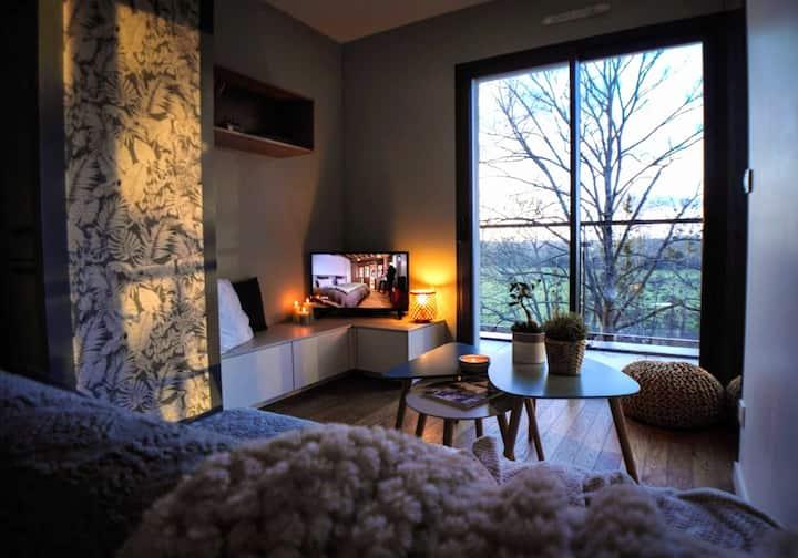 Appartement terrasse vue exceptionnelle