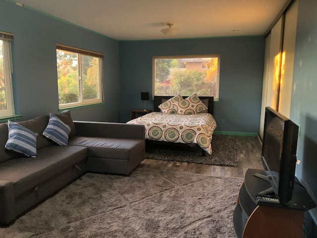 Spacious, Quiet Room in House Next to Park