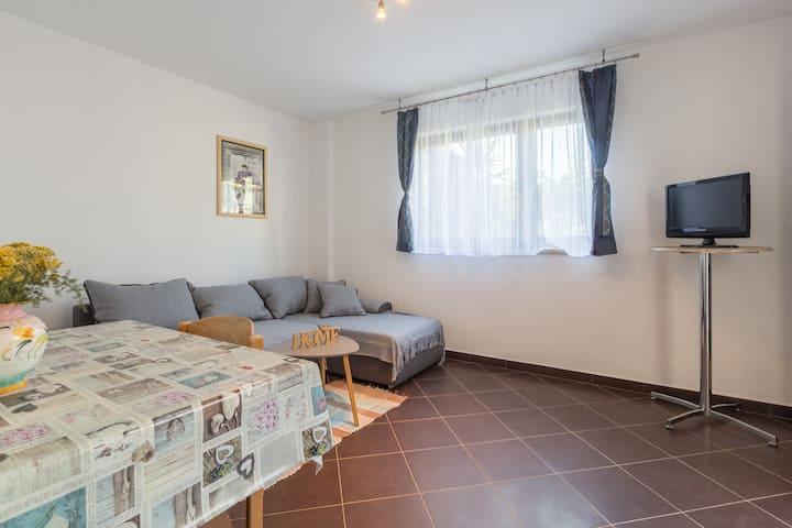 Apartment Gabi 2+2