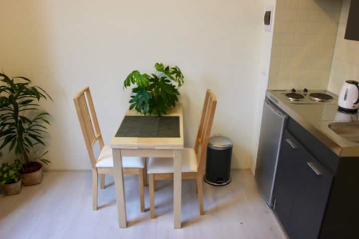 New cozy studio near Delft city center