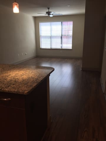 Unfurnished Apartment in very walkable South End - Charlotte - Appartement